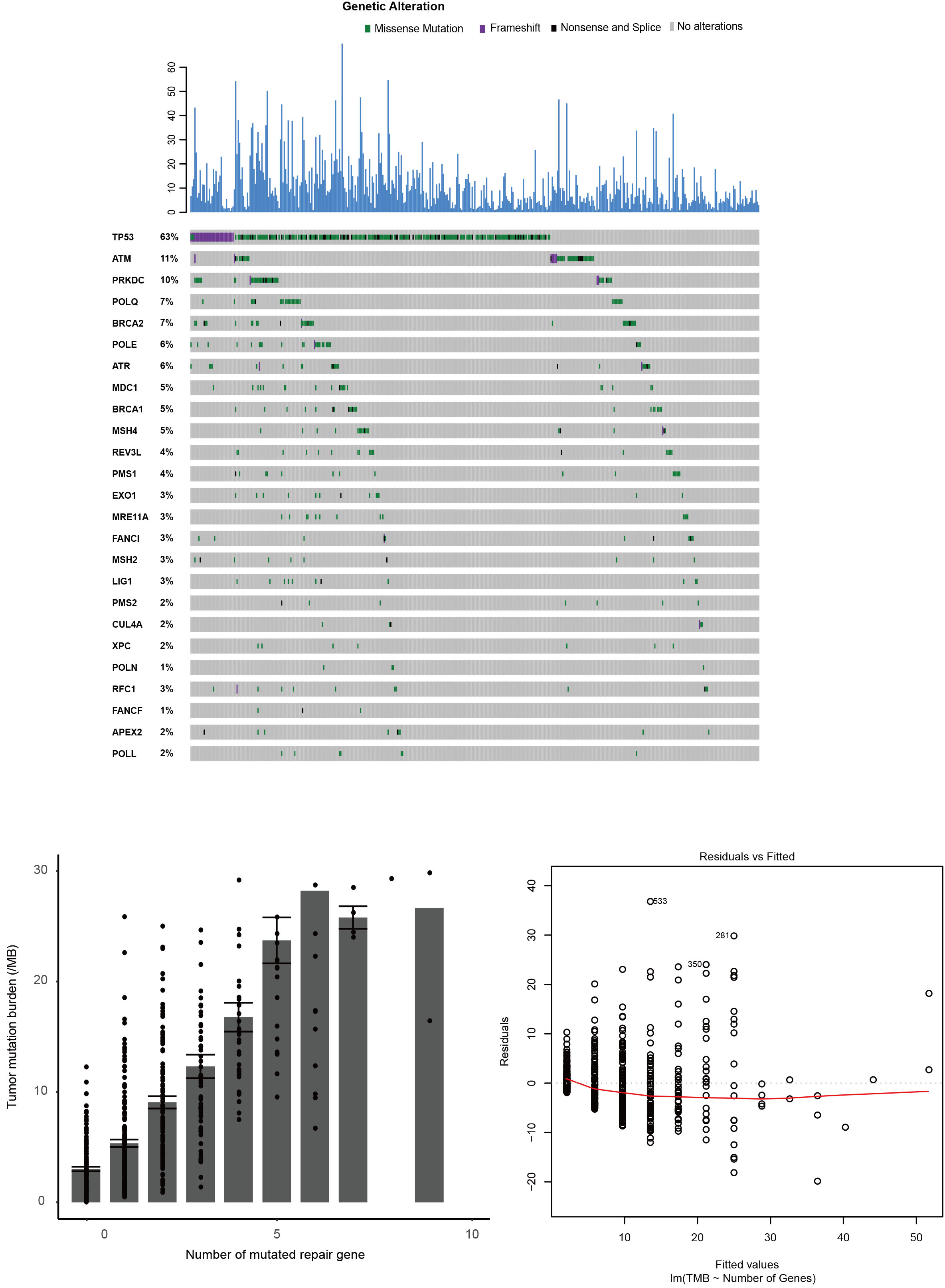 Iaslc International Association For The Study Of Lung Cancer Kazuma 124 Cm3 Wiring Diagram