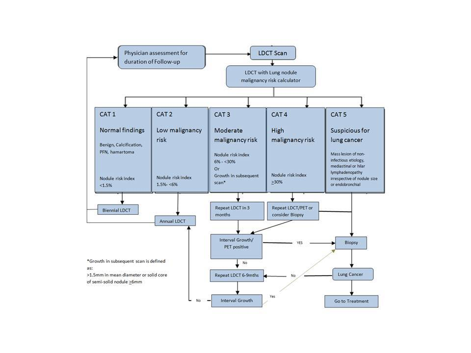 figure1 ilst lung nodule management protocol.jpg