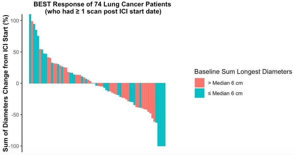 wclc -- tumor burden figure 1.jpg