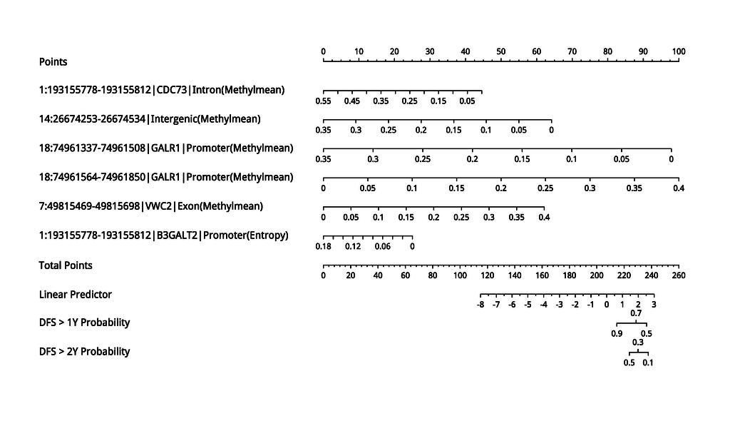 figure 1. dfs_specific_nomogram.png