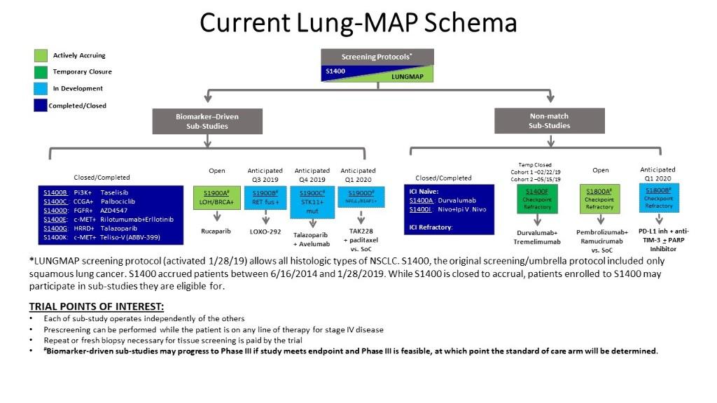 lung map schema.jpg