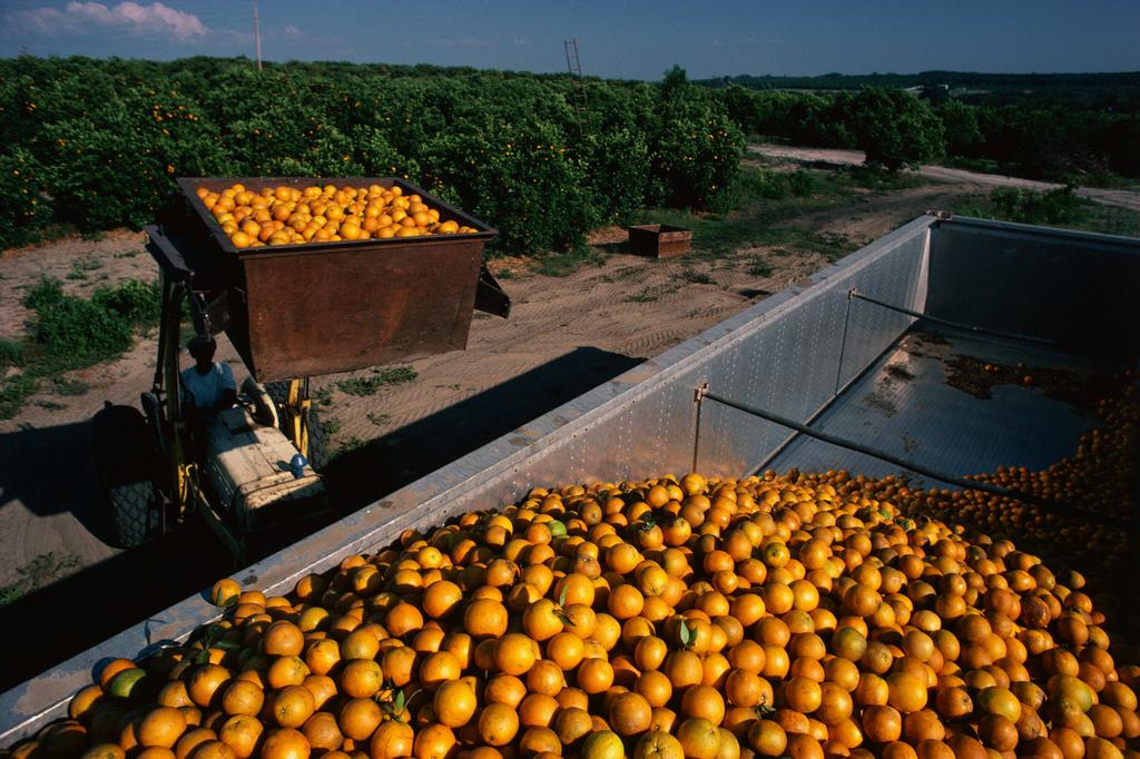 η Επιτροπή αυξάνει την εθνική στήριξη προς τους γεωργούς έως και 25 000 ευρώ
