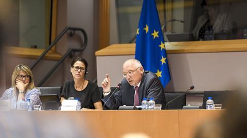 Rude' ex-commissioner blanks MEPs' diesel probe