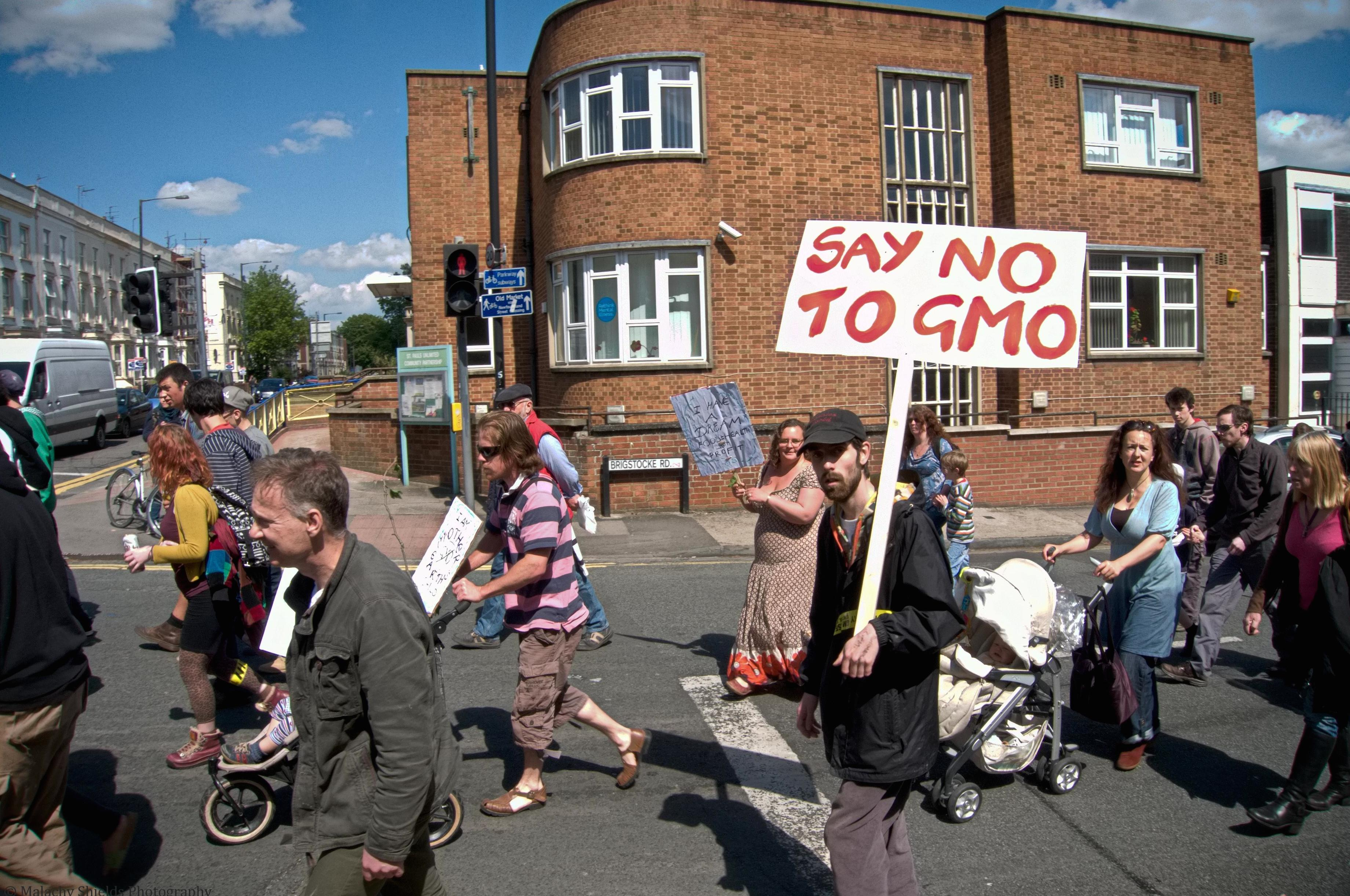 GMO SAFETY – All you want to know about GMO food and the ...