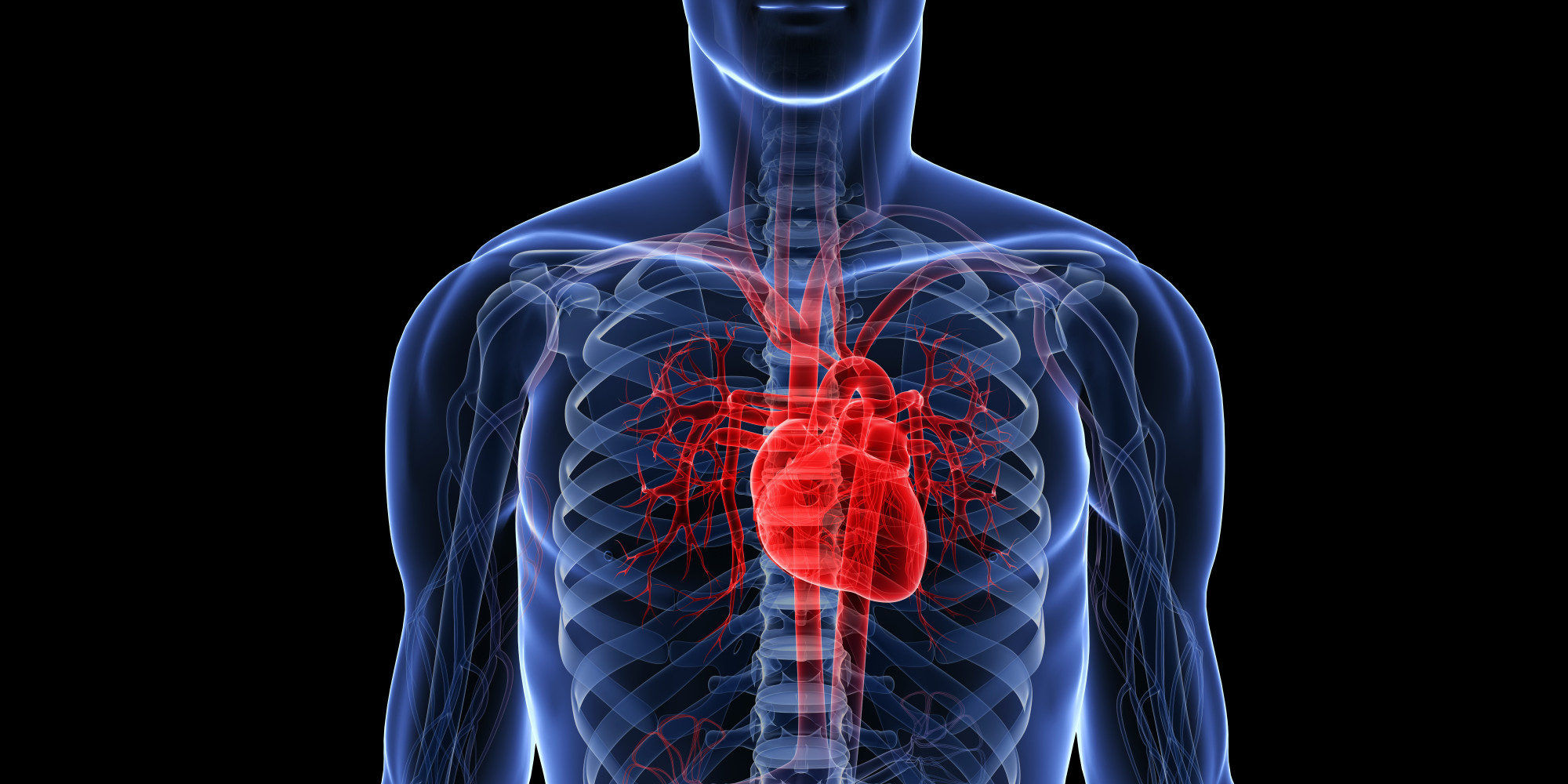 Cardiovascular Disease Remains Europes Biggest Killer