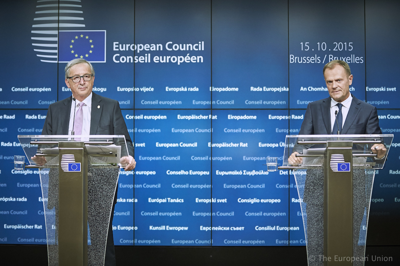 legislation and the european union essay