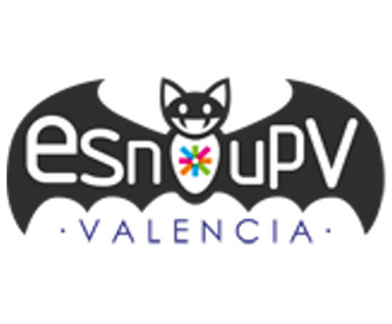 ESN the UPV Spain