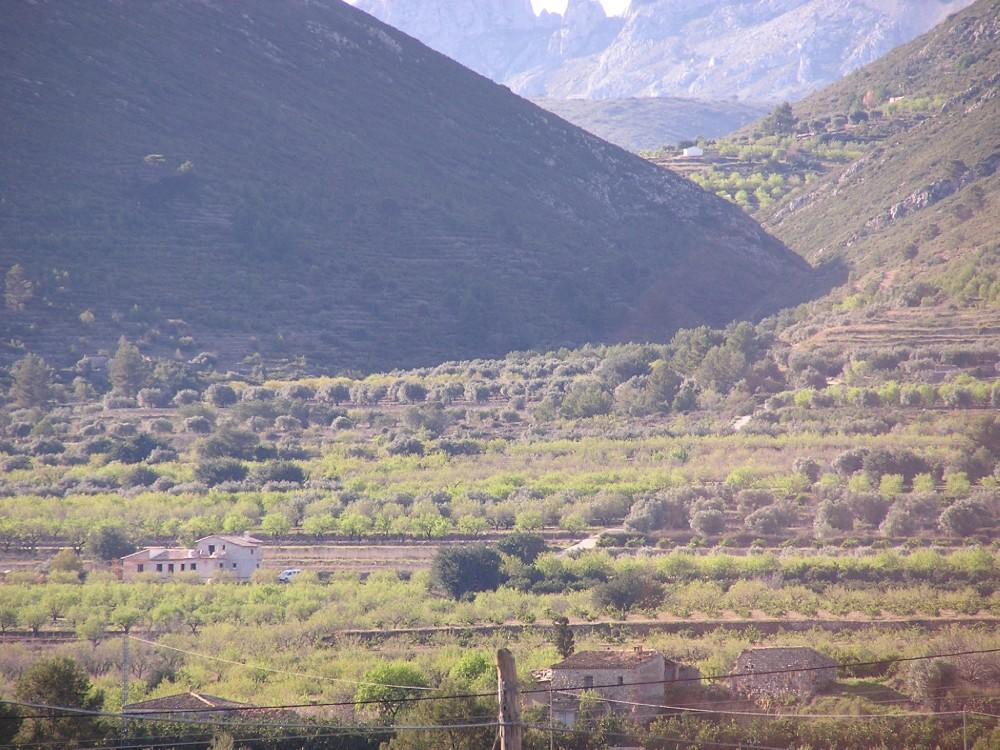 Rustic plot of 12,074m2 in Alcalali. 2km south of the village with access by tarmac road through cit, Spain