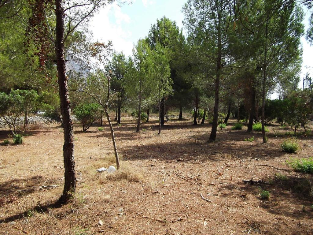 Beautiful large flat plot in a very desirable area of Javea. A flat building plot with view of the M, Spain