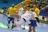 Cat handball