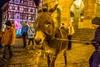 M%c3%a4rchenzauber   m%c3%a4rchenverf%c3%bchrung mit eselwanderung   klein   bildrechte  rothenburg tourismus service  sch%c3%b6bel