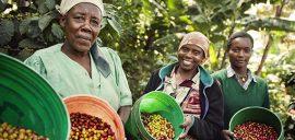 Womencoffeefarmers 13055 570