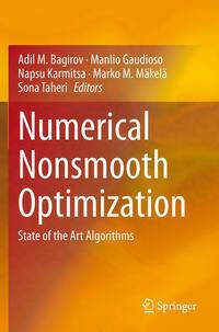 Numerical Nonsmooth Optimization