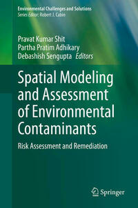 Spatial Modeling and Assessment of Environmental Contaminants