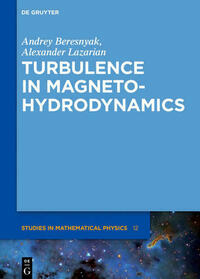 Turbulence in Magnetohydrodynamics