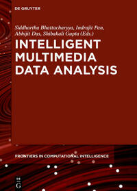 Intelligent Multimedia Data Analysis