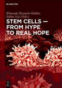 Stem Cells – From Hype to Real Hope