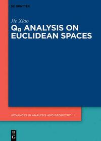 Qα Analysis on Euclidean Spaces