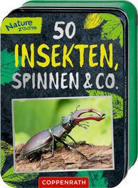 50 Insekten, Spinnen & Co.