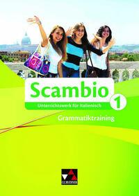 Scambio B / Scambio Grammatiktraining 1