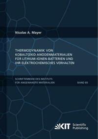 Thermodynamik von Kobaltoxid Anodenmaterialien für Lithium-Ionen-Batterien und ihr elektrochemisches Verhalten