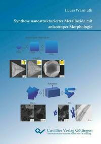Synthese nanostrukturierter Metalloxide mit anisotroper Morphologie