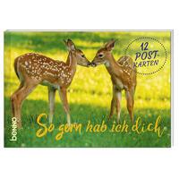 Postkartenbuch »So gern hab ich dich«
