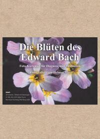Edition Tirta: Kartenset – Die Blüten des Edward Bach