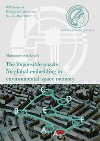 The impossible puzzle: No global embedding in environmental space memory