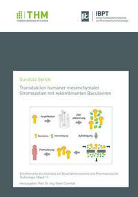 Transduktion humaner mesenchymaler Stromazellen mit rekombinanten Baculoviren