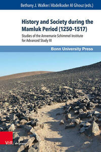 History and Society during the Mamluk Period (1250–1517)