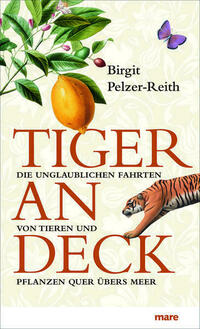 Tiger an Deck