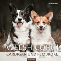 Welsh Corgi Cardigan und Pembroke