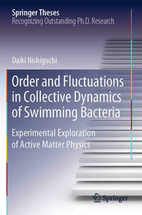 Order and Fluctuations in Collective Dynamics of Swimming Bacteria