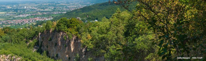 Rhein-Neckar