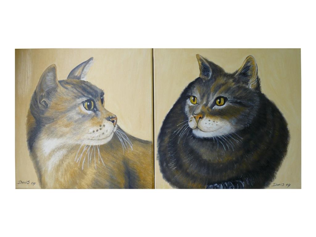 Katzen- innen