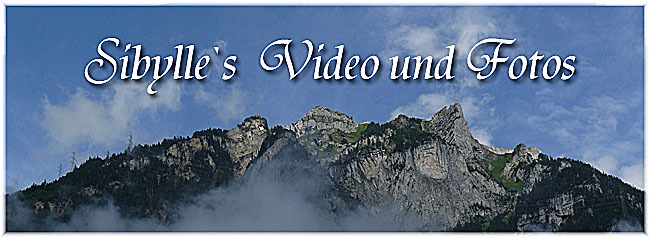 video und foto2014_09_01a