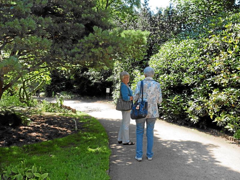 Arboretum 2015