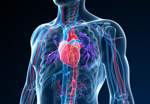 Rückenschmerzen Herzinfarkt
