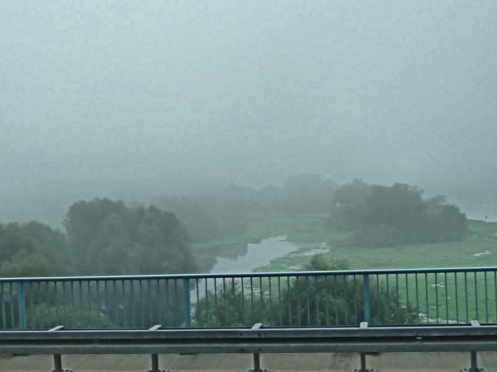 Nebel über der Oder