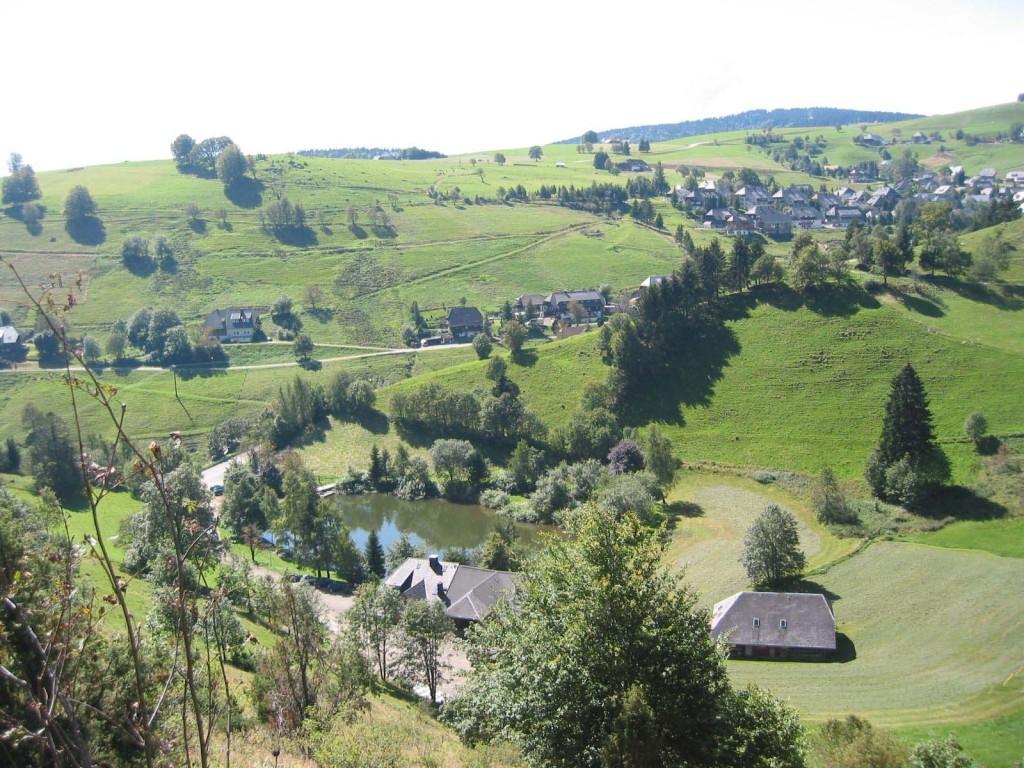 Schauinsland 24
