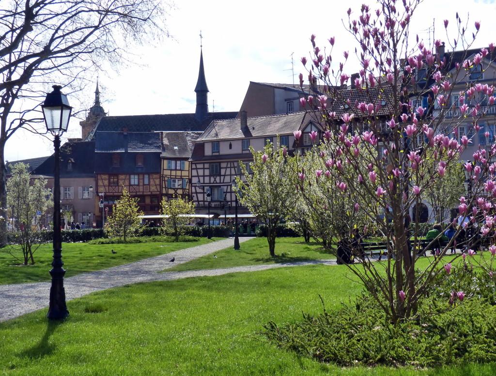 Colmar im Frühling