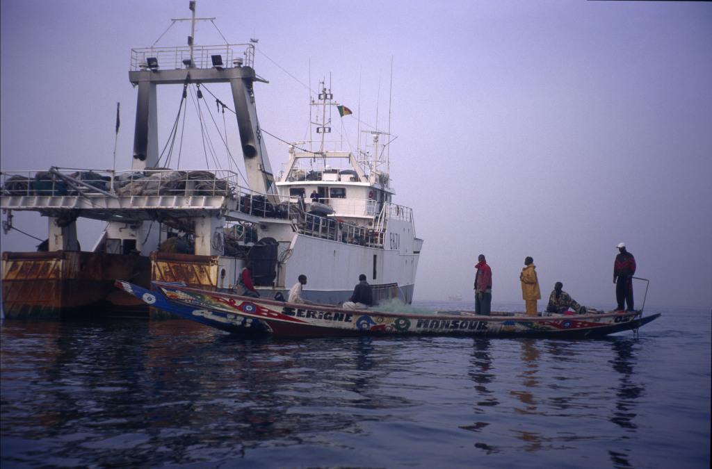 Fischerboot und Fischerkutter