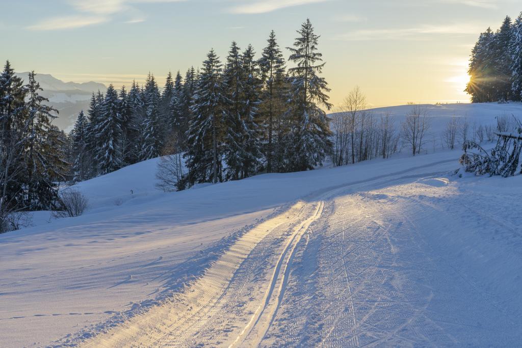 Verschneite Winterlandschaft mit gespurter Loipe