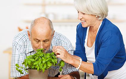 Mann und Frau riechen an Basilikum, © contrastwerkstatt - Fotolia.com