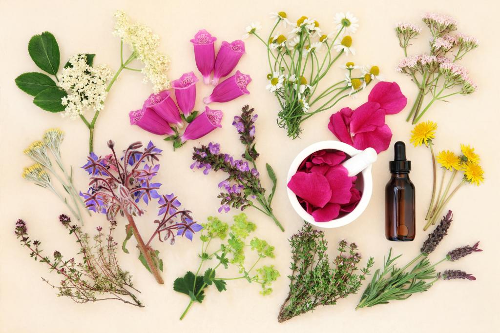 verschiedene Blumen und eine Ampulle