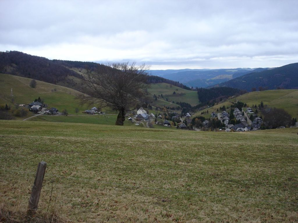 Schauinsland 4