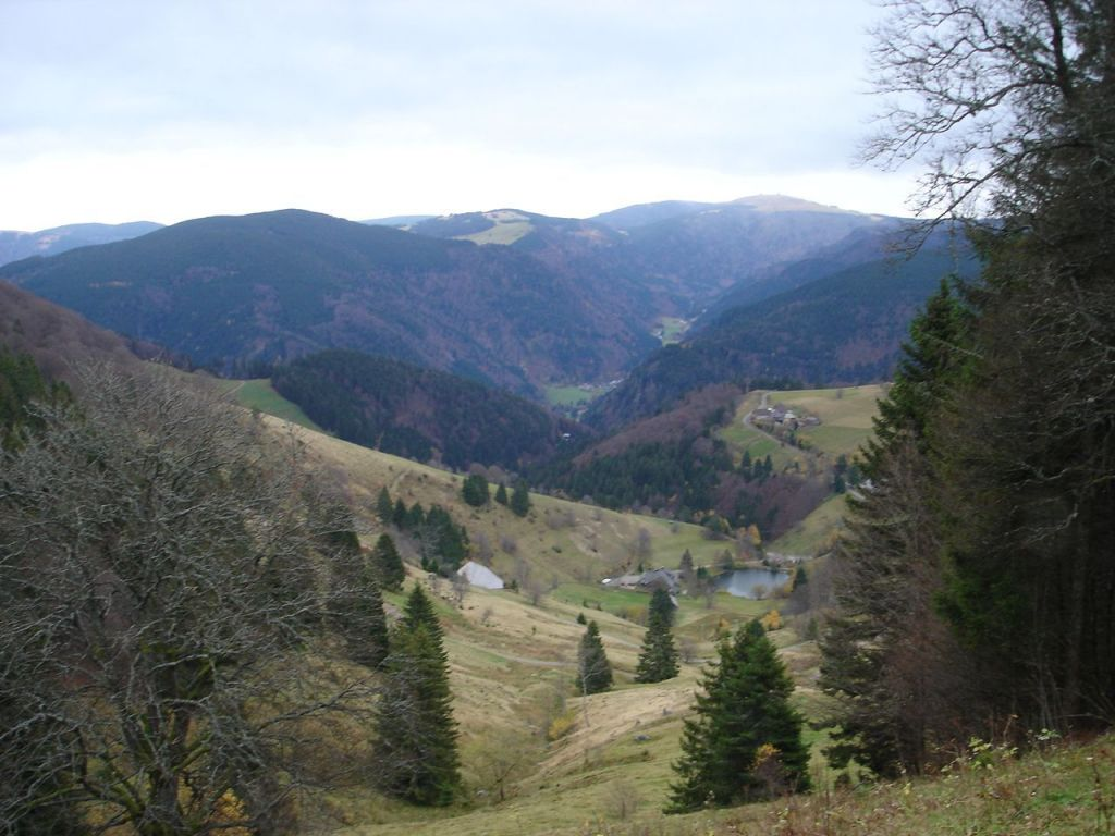 Schauinsland 9