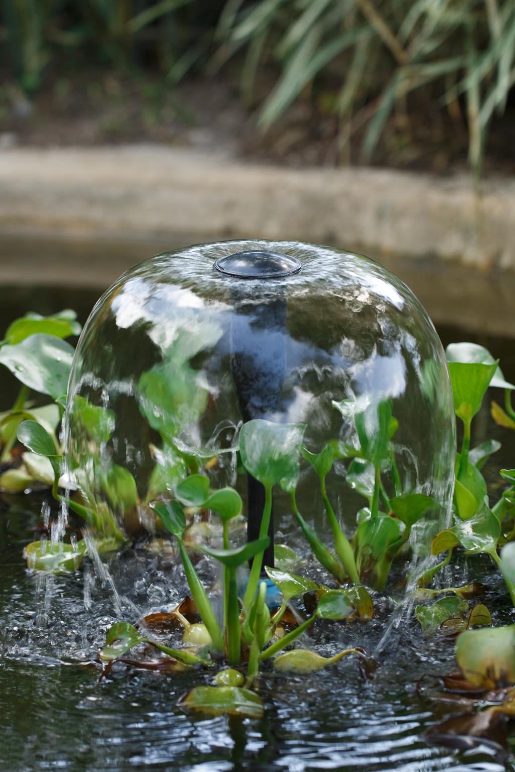 Wasserspiel in kleinem Teich