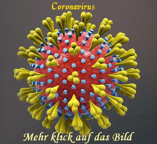 coronavirus-WW